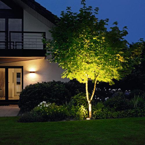 Landscape Lighting Petals